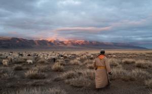 """Mongolie : avec l'opération """"1000 cachemires"""", Out of NowHere veut sauver le tourisme réceptif"""