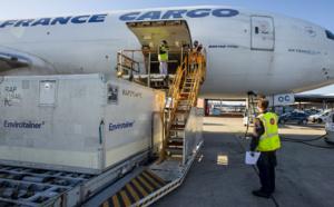 """Transport des vaccins Covid-19 : Air France-KLM se prépare """"à relever un très gros défi logistique"""""""