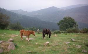 Pays Basque : sur les chemins des contrebandiers