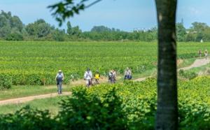 I. Bourgogne-Franche-Comté : Sur les routes des vignobles et des Grands Crus