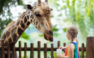 La défense de la cause animale va-t-elle tuer les zoos ?