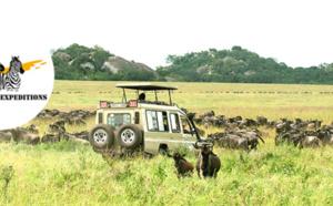 Tanzanie : Qatar Airways et Tanganyika Expeditions organisent un webinaire