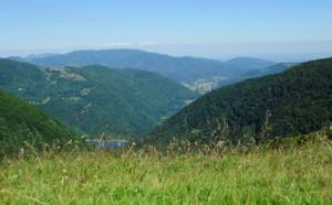 V. Bourgogne-Franche-Comté : à la découverte du Massif des Vosges
