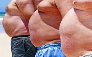 La Case de l'Oncle Dom, vous êtes gros? Donc vous êtes agent de voyages !