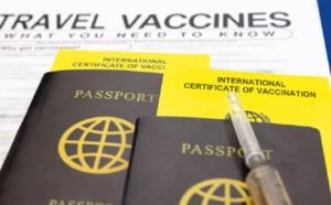 """Passeport sanitaire : il ne faut pas que """"la liberté de déplacement soit liée à la vaccination"""" selon le parti Pirate"""