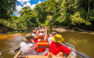 Guyane : Fenêtre ouverte sur l'Amazonie Française