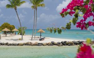 Martinique, une aventure dépaysante, en toute sécurité