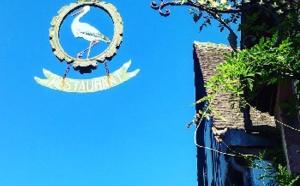 Alsace : Strasbourg, Riquewihr et le Grand Cru Schoenenbourg... au programme des visites des guides conférenciers