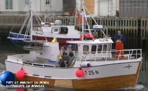 Voyage en Norvège : l'archipel des Lofoten et le marché de Tromso