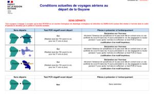 Variant brésilien : les vols entre la Guyane et la France pourraient-ils être suspendus ?
