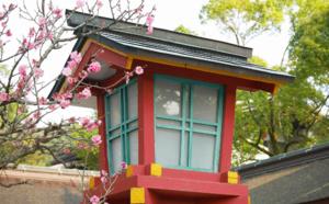 Voyage au Japon : Kyushu, l'île des cerisiers en fleurs
