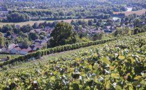 Coulommiers Pays de Brie : signature d'un contrat régional de destination avec la Région Ile-de-France