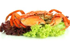 Le Top 7 des spécialités locales à déguster... en vacances !