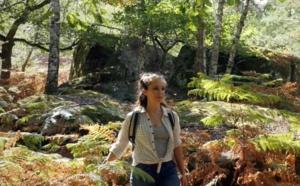 Histoire et nature : le Pays de Fontainebleau lance sa campagne de destination 2021
