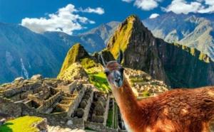 Mexique, Guatemala, Pérou : AmériGo fait voyager les clients vaccinés et s'occupe de tout !