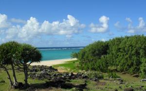 Réunion, Ile Maurice : Top Of Travel plonge dans l'Océan Indien