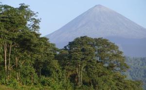 Protection de la biodiversité: retour sur l'évolution des «aires protégées» danslemonde