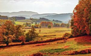 L'Automne, c'est la Bourgogne