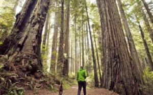 Visit California a lancé le RESPECT California Responsible Travel Code, une charte qui invite les visiteurs à voyager avec respect et à explorer le Golden State en s'engageant sur sept points - DR : Visit California