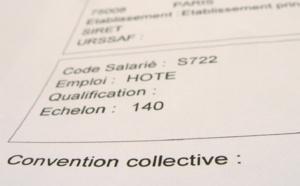 """Convention collective : """"le SNAV ne propose que des miettes !"""" selon les syndicats"""