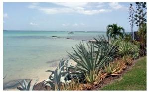 Ouragan Dean : La Martinique sera fin prête pour la haute saison !