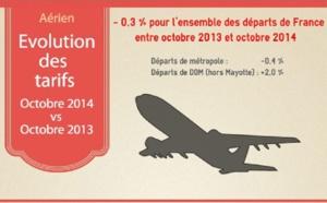 Transport aérien : légère baisse des tarifs au départ de France en octobre 2014