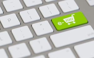 "FEVAD : les ventes en ligne ""voyage"" reculent de 2% en 2014"