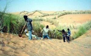Aérien : 8 euros par passager pour reboiser le Sahel !