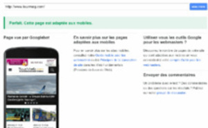 Mobile Internet: what opportunities for tourism companies?