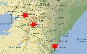 Kenya : la France a-t-elle tort de jouer la prudence ?