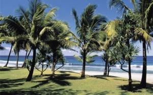L'Ile de La Réunion se dote d'un Comité Régional du Tourisme