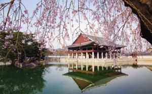 Nouvelles Frontières fait gagner un voyage en Corée du Sud aux agents de voyages