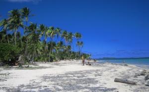 """Le virus Zika pourrait-il """"gripper"""" la saison aux Antilles ?"""