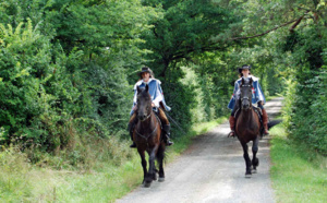 D'Artagnan's Road (France): a horseback riding trail to be born in 2017