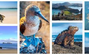 Galapagos : Celebrity Cruises rachète le TO Ocean Adventures