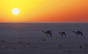 Oman : la chute de fréquentation va-t-elle faire baisser les prix ?