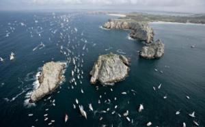 Brest 2016 : 1000 navires à l'abordage de la Bretagne