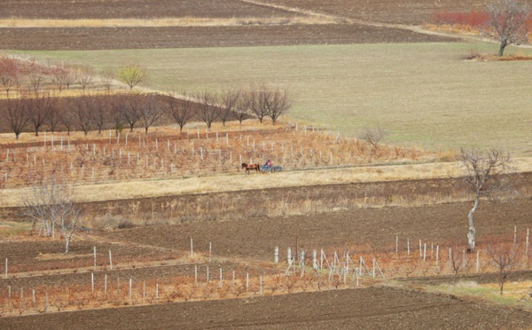 La Moldavie, terre inconnue à l'Est