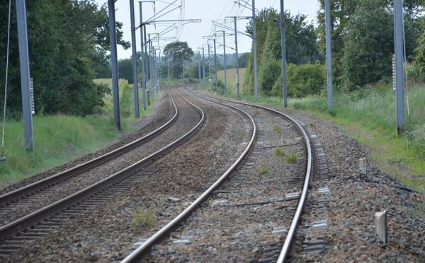 La case de l'Oncle Dom : SNCF, OUI mais... non !