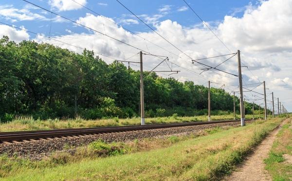La case de l'Oncle Dom : SNCF, primes et allocations dignes d'un inventaire à la Prévert !