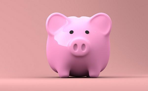 La case de l'Oncle Dom : Assises du Transport... du lard ou du cochon ?