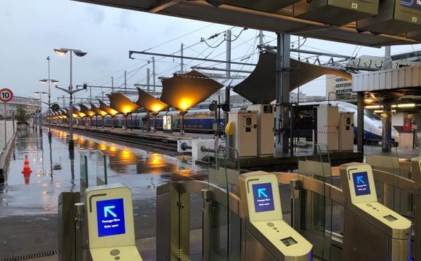 Grèves SNCF : un TGV sur 3 en circulation jeudi