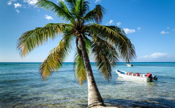Le Comité Martiniquais du Tourisme signe un partenariat avec Airbnb