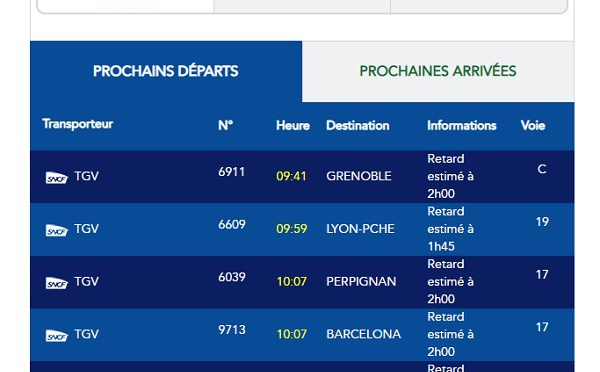 Gare de Lyon (Paris) : de nombreux retards en raison d'une panne électrique