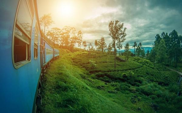 Sri Lanka: le visa devrait s'obtenir à l'arrivée dès le 1er mai