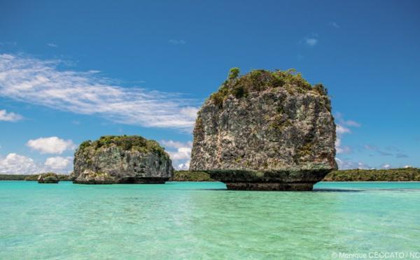La Nouvelle-Calédonie fait son come-back sur le marché français