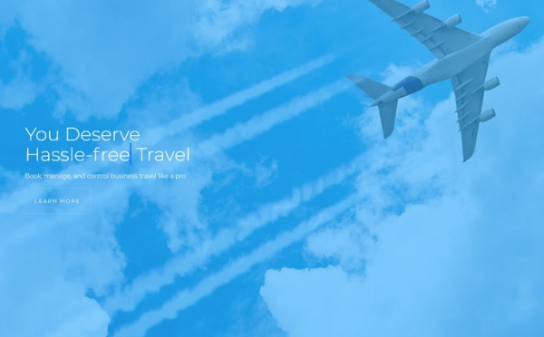 Fairjungle rejoint l'alliance Biz Travel