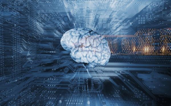 La case de l'Oncle Dom : Intelligence ? Artificielle peut-être... humaine toujours !