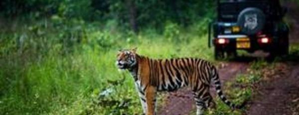 Madhya Pradesh présentera ses atouts à l'IFTM (Stand N148)