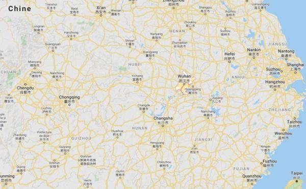 Chine : un nouveau coronavirus nCoV identifié